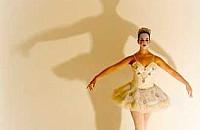 Somos Luz e Sombra (4)