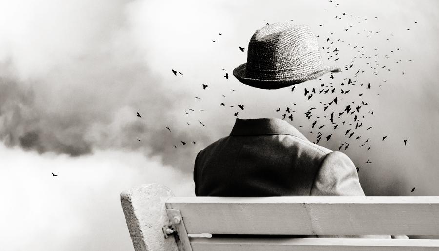 Schopenhauer e a vontade como essência de todas as coisas – (En)Cena – A  Saúde Mental em Movimento