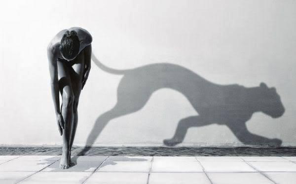 La Sombra-Poderosa Aliada
